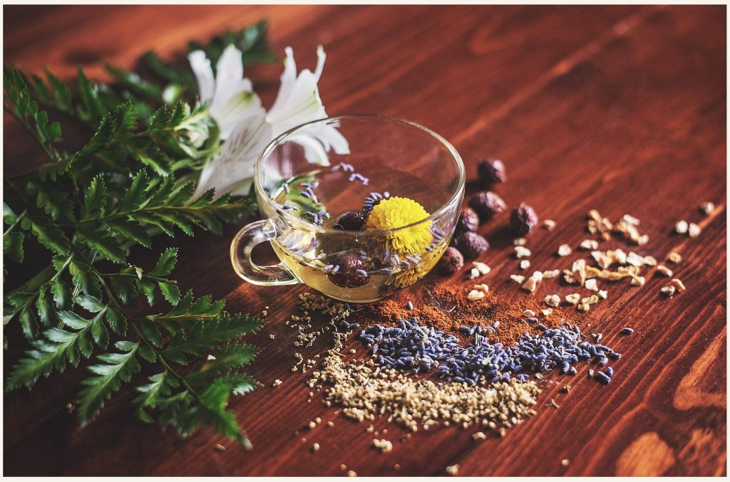 Medicinal Herbs for Treatment of Depression